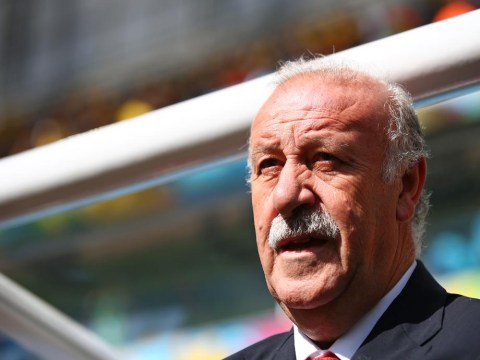 Staying put! Vicente Del Bosque will remain Spain coach despite shambolic World Cup