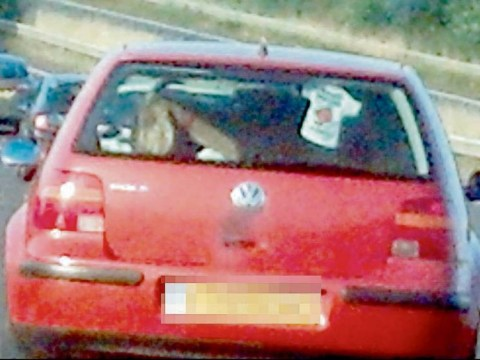 Just a goat in the back of a VW Polo – and your problem is?