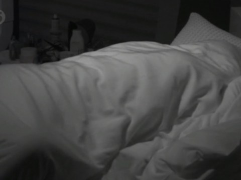Big Brother 2014: Kimberly Kisselovich and Steven Goode have actual unabashed Big Brother sex