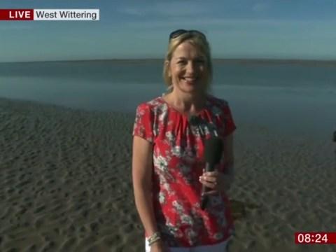 Hilarious moment BBC Breakfast weather reporterCarol Kirkwood is upstagedby a weeing dog