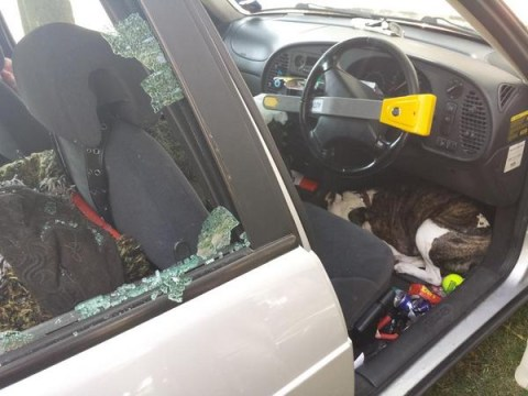 Police smash car windows to rescue dog on hottest day of the year