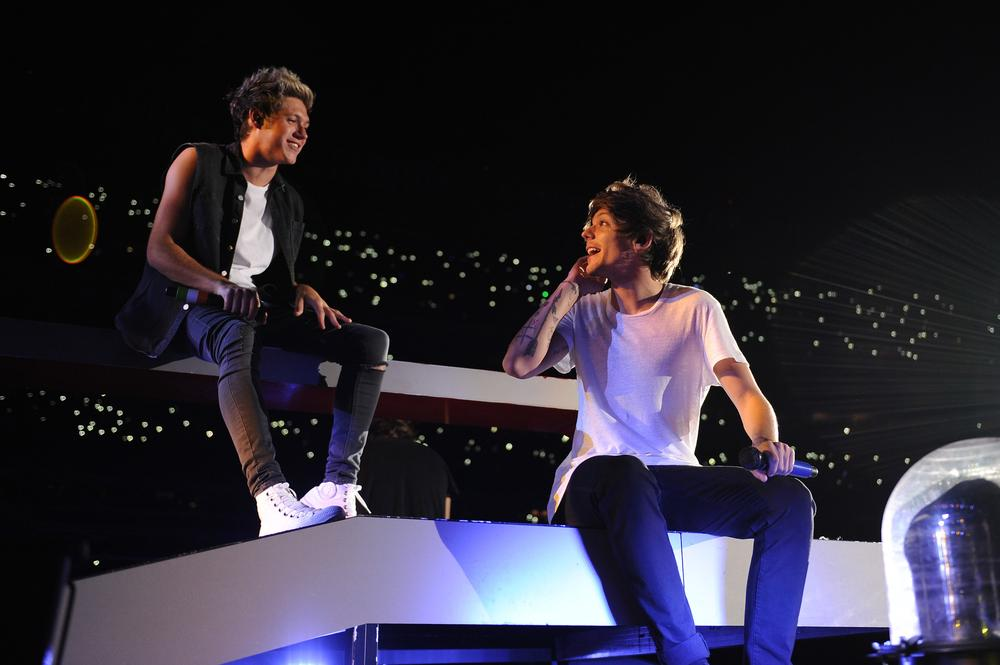 14 facts about the One Direction Where We Are movie
