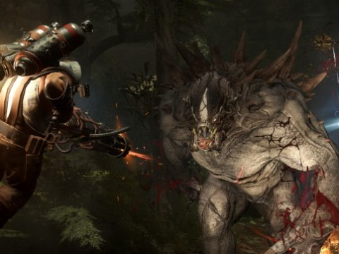 Why Evolve is impossible to review