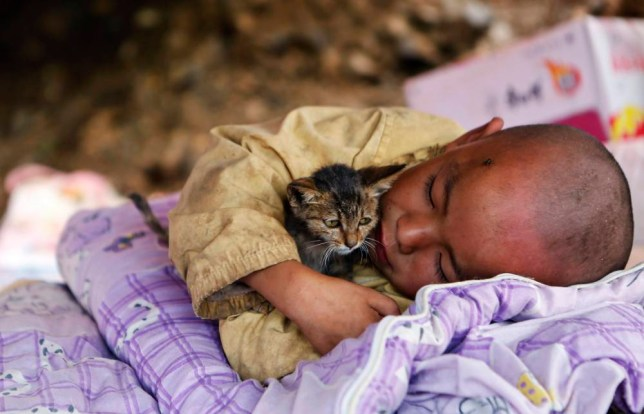 A child, cuddling a cat, rests under a shelter at the earthquake zone in Ludian county, Zhaotong, Yunnan province, August 5, 2014. An earthquake in China on the weekend triggered landslides that have blocked rivers and created rapidly growing bodies of water that could unleash more destruction on survivors of the disaster that killed 410 people, state media reported on Tuesday. Picture taken August 5, 2014. REUTERS/Stringer (CHINA - Tags: DISASTER ENVIRONMENT SOCIETY TPX IMAGES OF THE DAY ANIMALS) CHINA OUT. NO COMMERCIAL OR EDITORIAL SALES IN CHINA