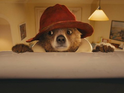 Surely not! Paddington Bear's big screen debut slapped with PG certificate for 'sex references' and 'bad language'