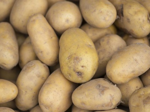 Two women crushed to death by huge truck load of potatoes