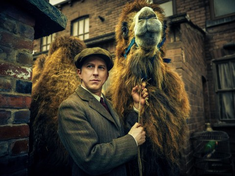 BBC under fire over use of wild animals in new six-part drama Our Zoo