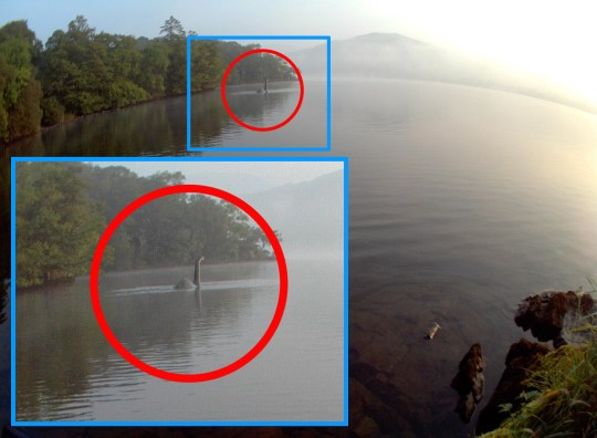 Loch Ness Monster 'spotted' at Lake Windermere