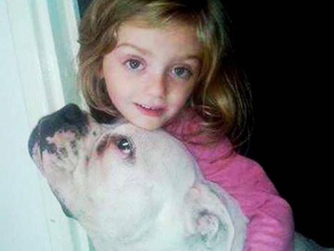 Girl, 4, mauled to death by adopted dog
