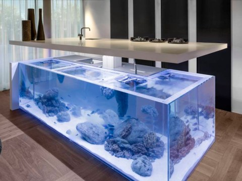This aquarium kitchen is exactly what you need in your house when you become a grown-up