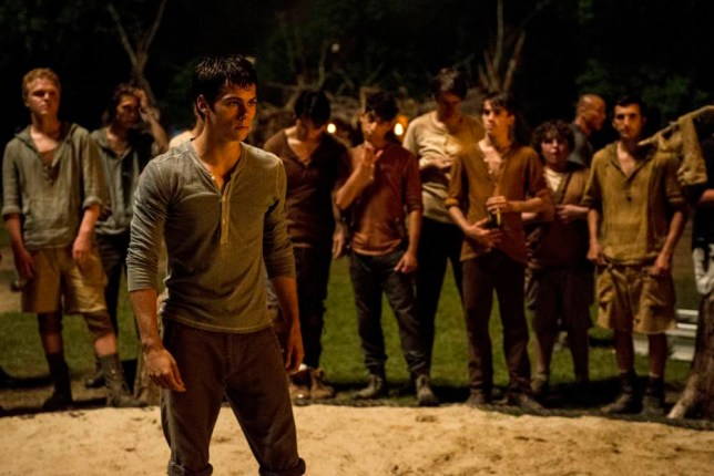 The Maze Runner The Scorch Trials release date set for 2015