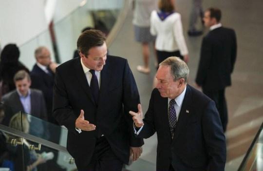David Cameron, Queen