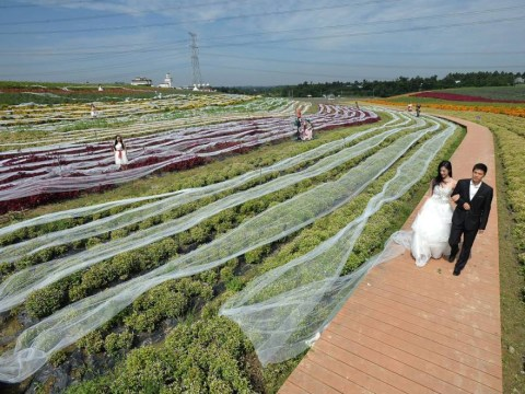 Here comes the bride… Still coming… Still coming: Wedding dress with three mile-long train