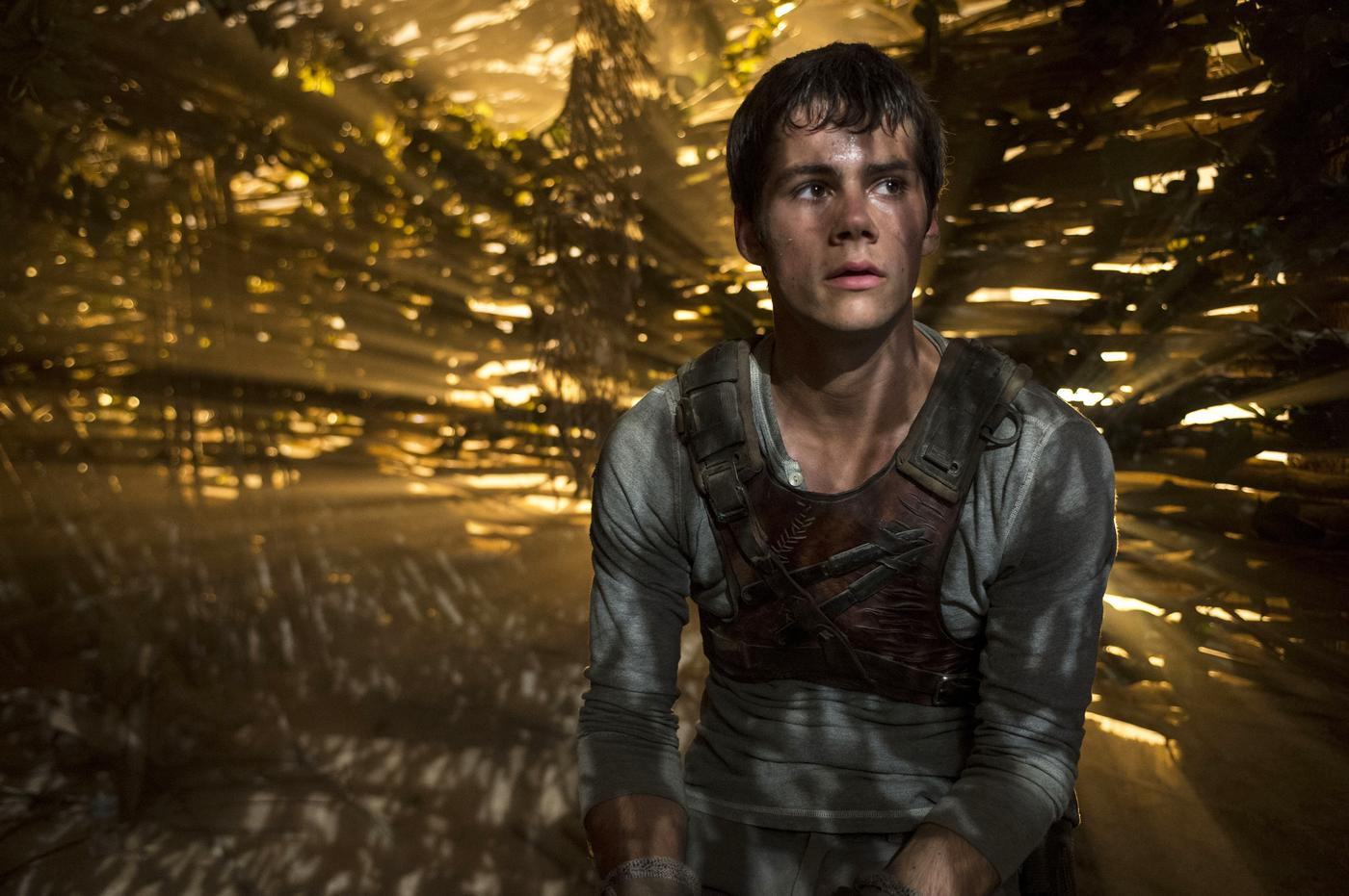 The Maze Runner: 12 things you need to know about Dylan O'Brien
