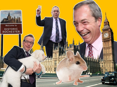 The political week in five rather silly stories