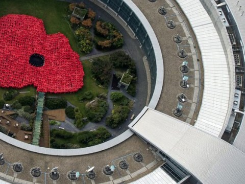 1,400 spies create massive poppy tribute at the GCHQ listening station