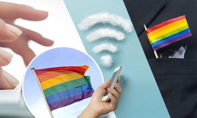 .gay dotgay domain