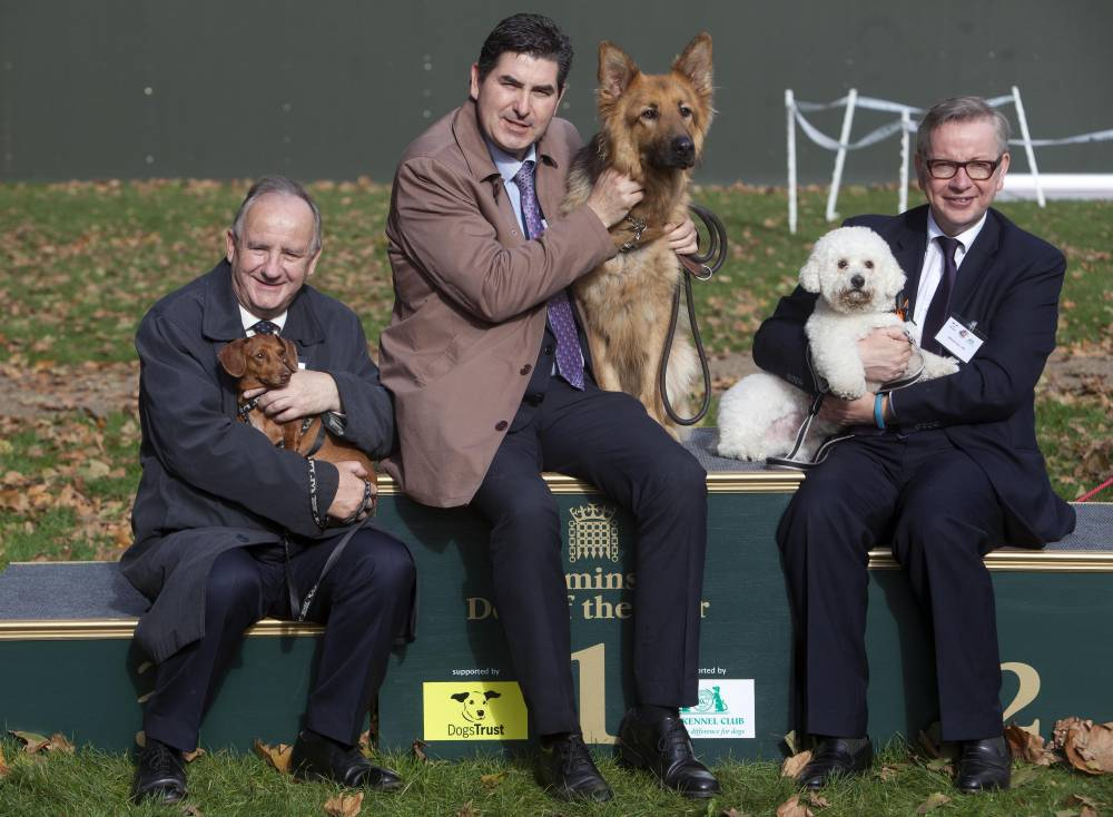 EDITORIAL USE ONLY From left to right, 3rd place winner Laurence Robertson MP for Tewkesbury with his Dachshund Sausage, 1st place winner Rob Flello MP for Stoke on Trent South with his German Shepherd, Diesel and 2nd place winner Michael Gove MP for Surrey Heath with his Bichon Frise, Snowy, at the Westminster Dog of the Year competition at Victoria Tower Gardens in London, organised by the Dogs Trust and The Kennel Club. PRESS ASSOCIATION Photo. Picture date: Thursday October 23, 2014. The competition, which is in its 22nd year, is open to all canines belonging to MPs and Lords and celebrates the special relationship between human and dog. 21 canines took part from the Conservative, Labour and Liberal Democrat parties and Independents. Photo credit should read: David Parry/PA Wire