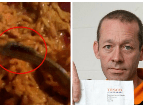 Centipede crawls out of Tesco meal AFTER it's been microwaved