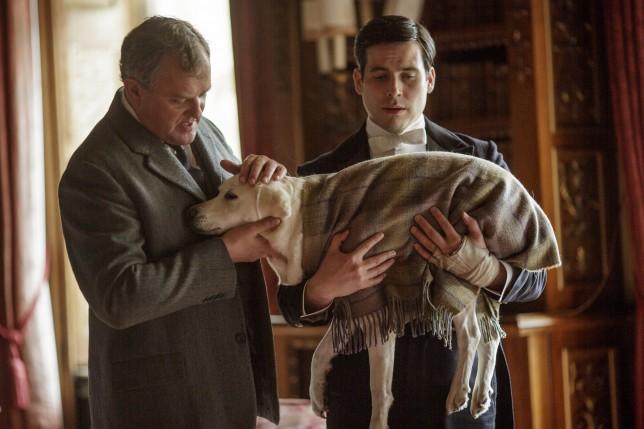 Downton Abbey, Downton Abbey season five, Isis, Isis the dog, Hugh Bonneville