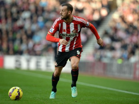 Steven Fletcher is vital before Sunderland's cavalry arrives