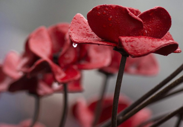 Lest we forget the Tower Of London poppies mean remembrance – and giving back