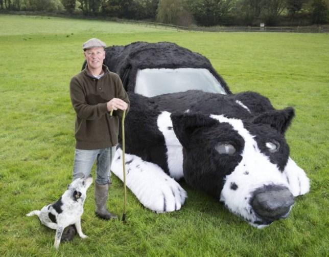 Sussex Farmer Dave Isaac with his Sheep dog car Floss who needs a new home (sheep dog Lad also in pic) ***Pic by David McHugh 007768 721637***