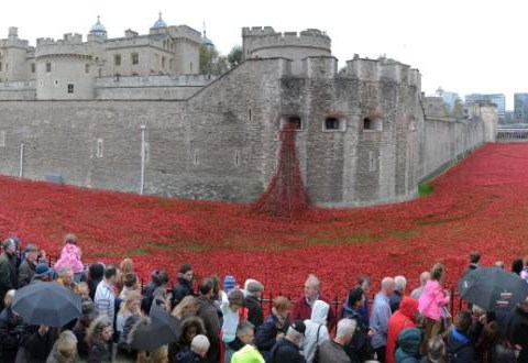 Tower of London artwork designer 'perturbed' by 'obsessive' reaction to poppy display