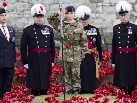 Final poppy planted at The Tower of London's Blood Swept Lands and Seas of Red to mark centenary of Armistice Day 2014