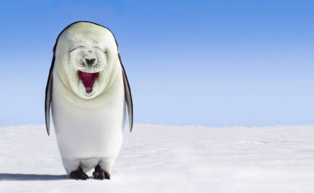 Artist's vision of how a seal-penguin hybrid might look after THAT video