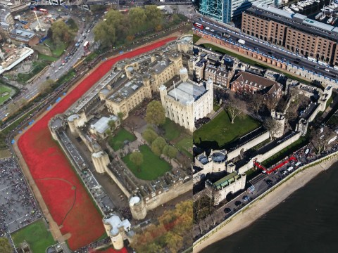 Amazing before and after photos of Tower of London's poppy river
