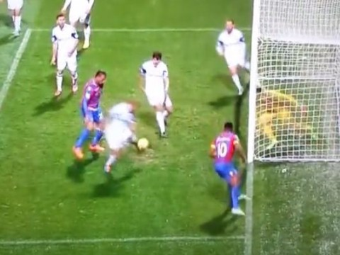Sunderland goalkeeper Costel Pantilimon goes mad after Wes Brown scores another classic Sunderland own goal against Crystal Palace
