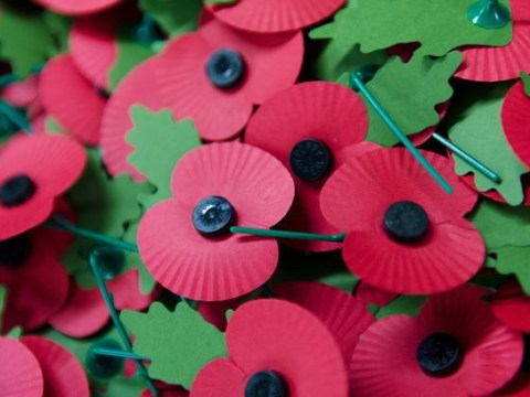 Should TV presenters be made to wear poppies? Metro readers have their say