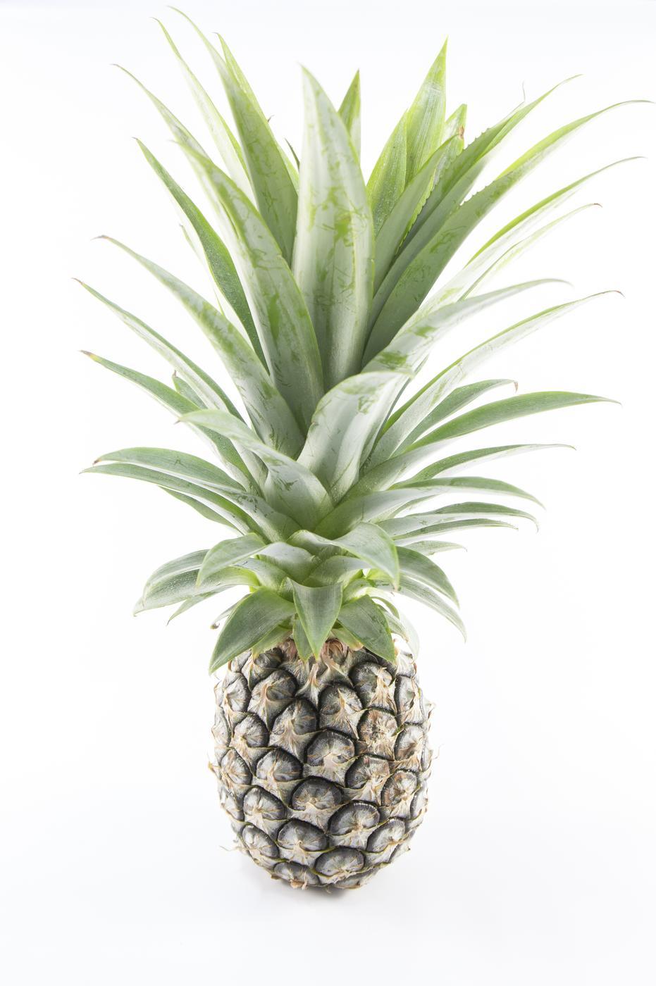 pineapple fruit isolated Thossaphon/Thossaphon