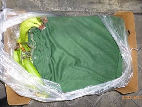 Police find 'more than £40 million' worth of cocaine in shipment of bananas