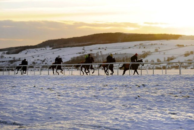 RETRANSMITTING CORRECTING COLOUR BALANCE Horses at exercise on Middleham Moor in the Yorkshire Dales after overnight snow. PRESS ASSOCIATION Photo. Picture date: Friday December 12, 2014. Most parts of the UK will experience some respite following the stormy weather of recent days, the Met Office said. See PA story WEATHER Cold. Photo credit should read: John Giles/PA Wire