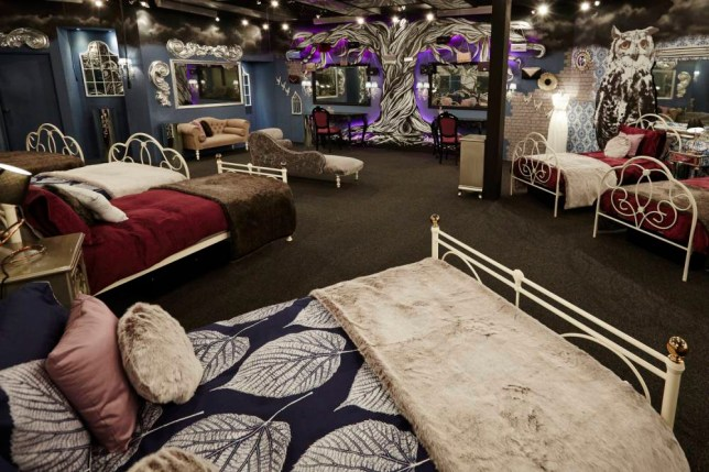 Celebrity Big Brother 2015 house (Picture: Channel 5)