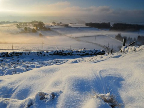 Jack Frost spreads across the UK as temperatures plummet