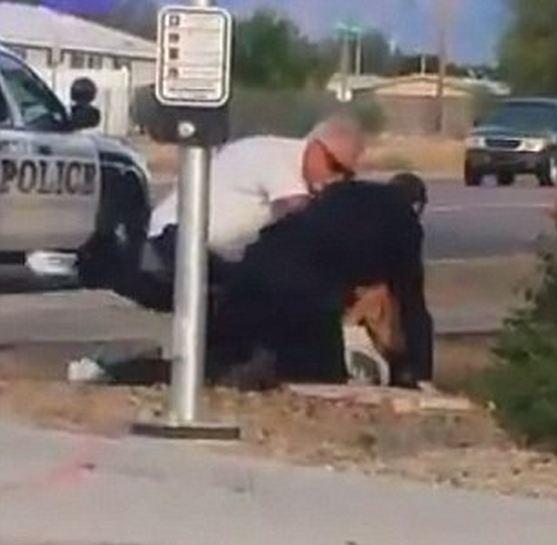 Arizona police video