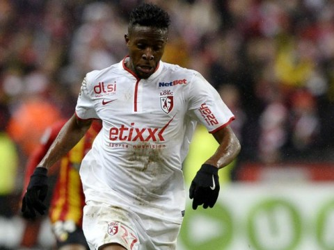 Divock Origi could return to Liverpool from Lille this month, manager Brendan Rodgers reveals
