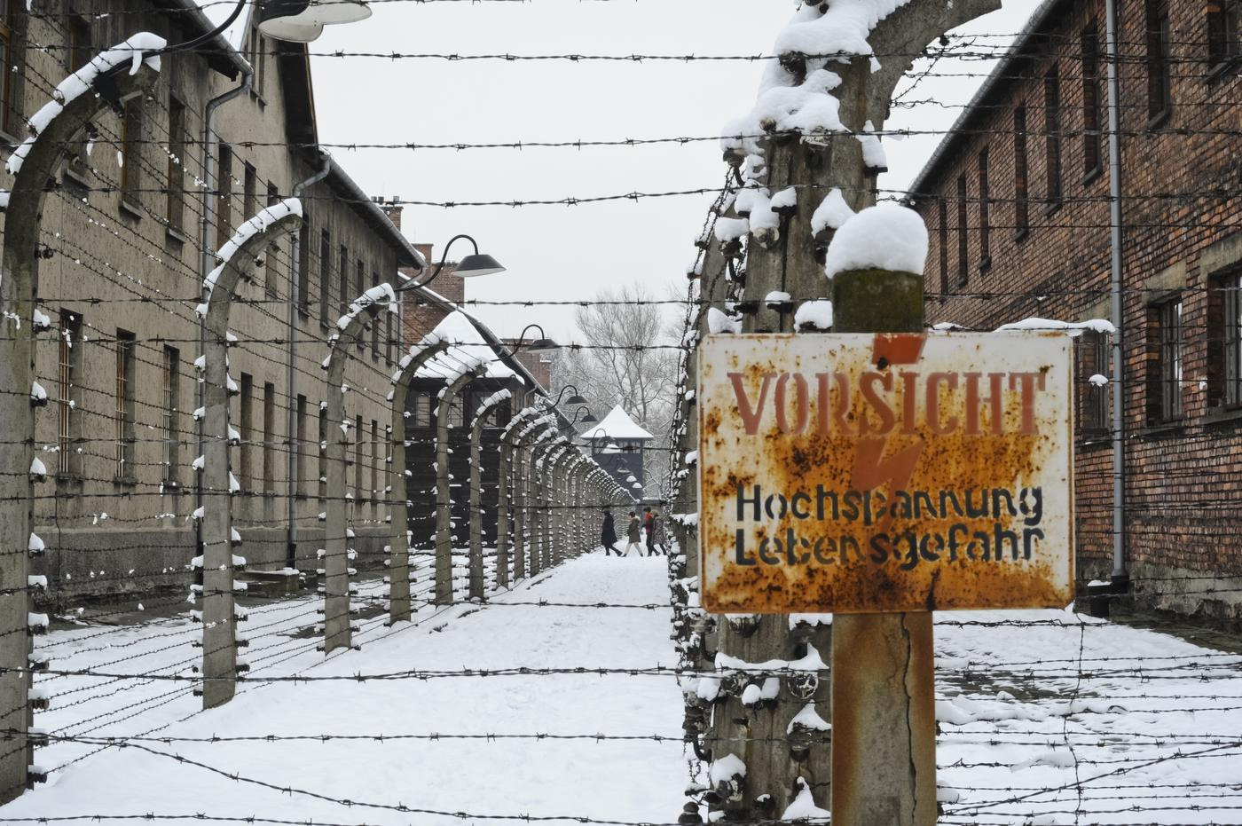 Holocaust Memorial Day: How the events of the 1945 Auschwitz liberation unfolded