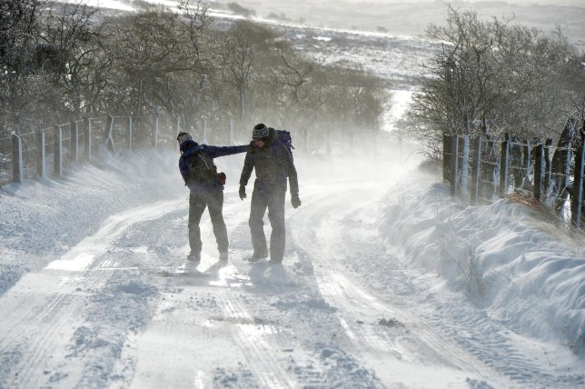 BELFAST, UNITED KINGDOM - JANUARY 29: Walkers on Divis mountain struggle with adverse weather on January 29, 2015 in Belfast, United Kingdom. Continued snow fall and freezing conditions are affecting the road and rail networks across Northern Ireland and the northern part of the UK. The Met Office said a yellow warning of snow and ice is in place until 11:00 GMT on Friday. Charles McQuillan/Getty Images