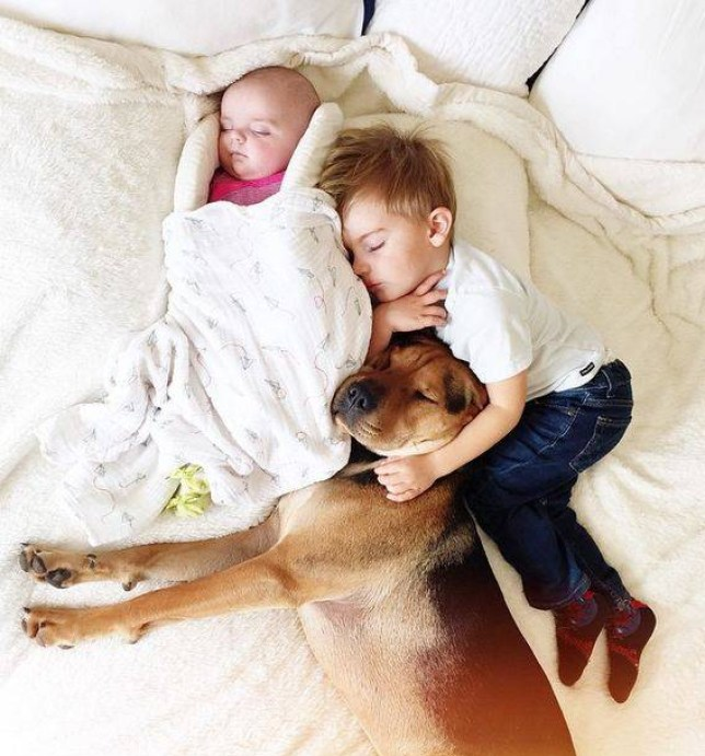 Theo, Beau, and Evangeline Images are copyright Jessica Shyba, http://www.mommasgonecity.com, #theoandbeau #theoandevvie.