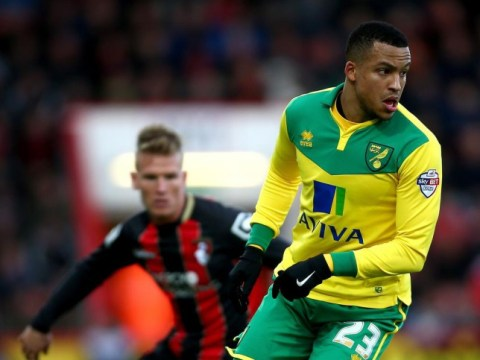Why Norwich City's transfer window flattered to deceive