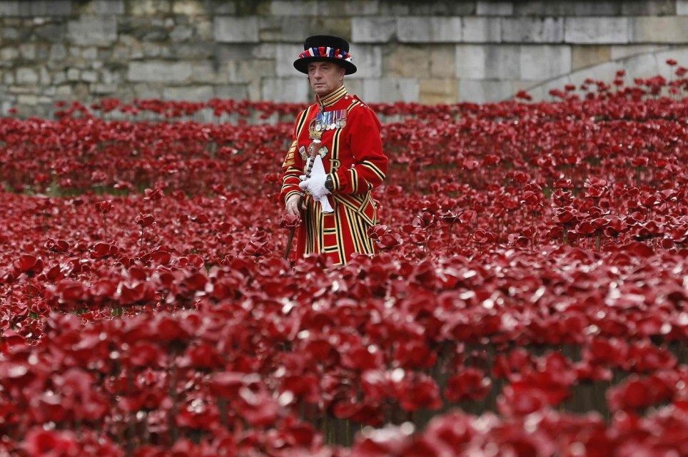 Poppy installation at the Tower of London last year (Picture: Reuters)