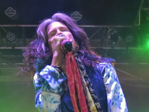 Guitar Hero netted Aerosmith 'more money than any one of their albums'