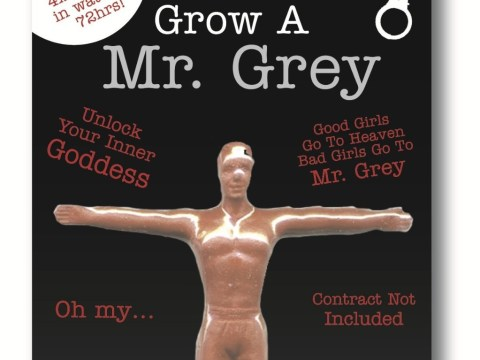 Now everyone can have their very own Mr Grey at home – just stick him in water and watch him grow