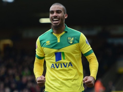 Norwich City still in decent fettle for Championship run-in after eight frantic days
