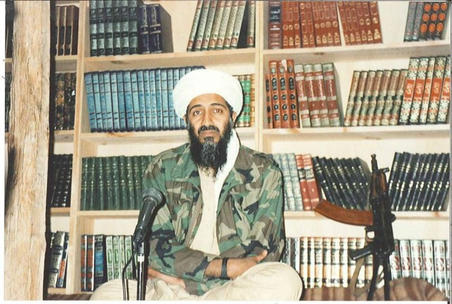 Image result for Osama Bin Laden had a large library of pornography