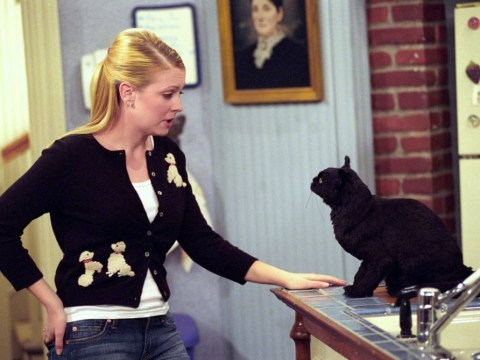 Calling all children of the 90s! There's going to be a Sabrina The Teenage Witch reboot